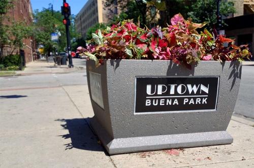 Buena Park Planter
